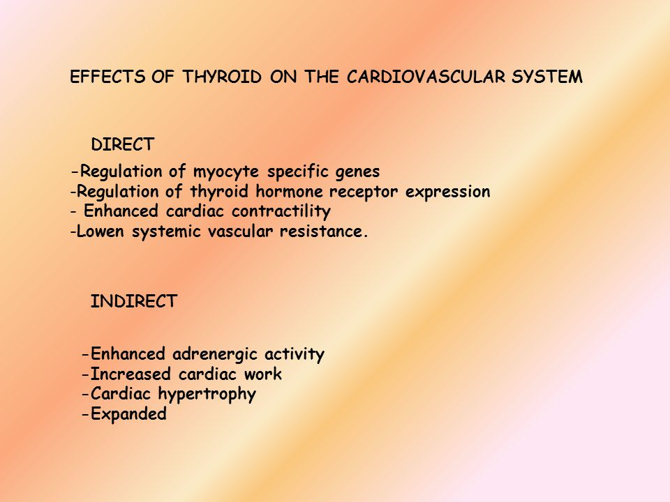 EFFECTS OF THYROID ON THE CARDIOVASCULAR SYSTEM