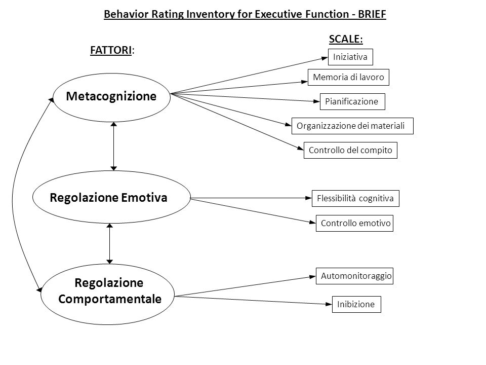 Behavior Rating Inventory for Executive Function - BRIEF