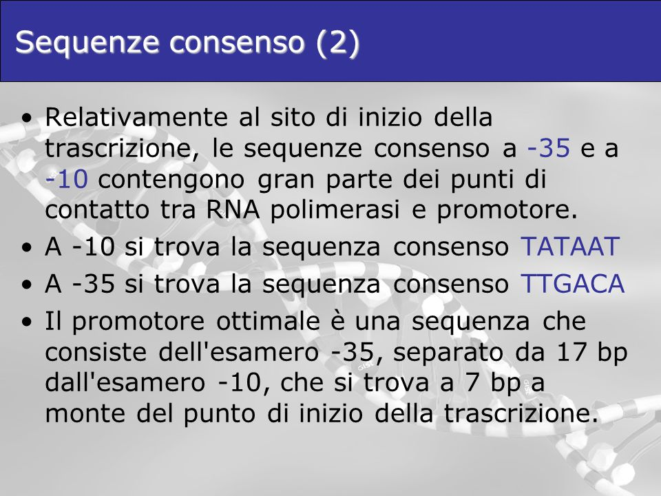 Sequenze consenso (2)