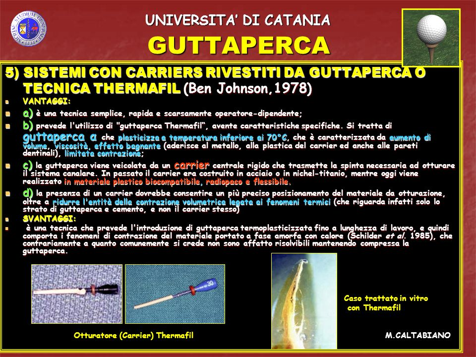 GUTTAPERCA UNIVERSITA' DI CATANIA