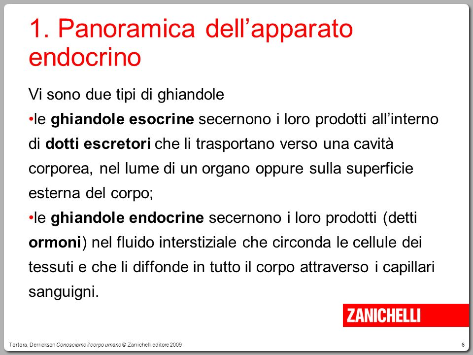 1. Panoramica dell'apparato endocrino