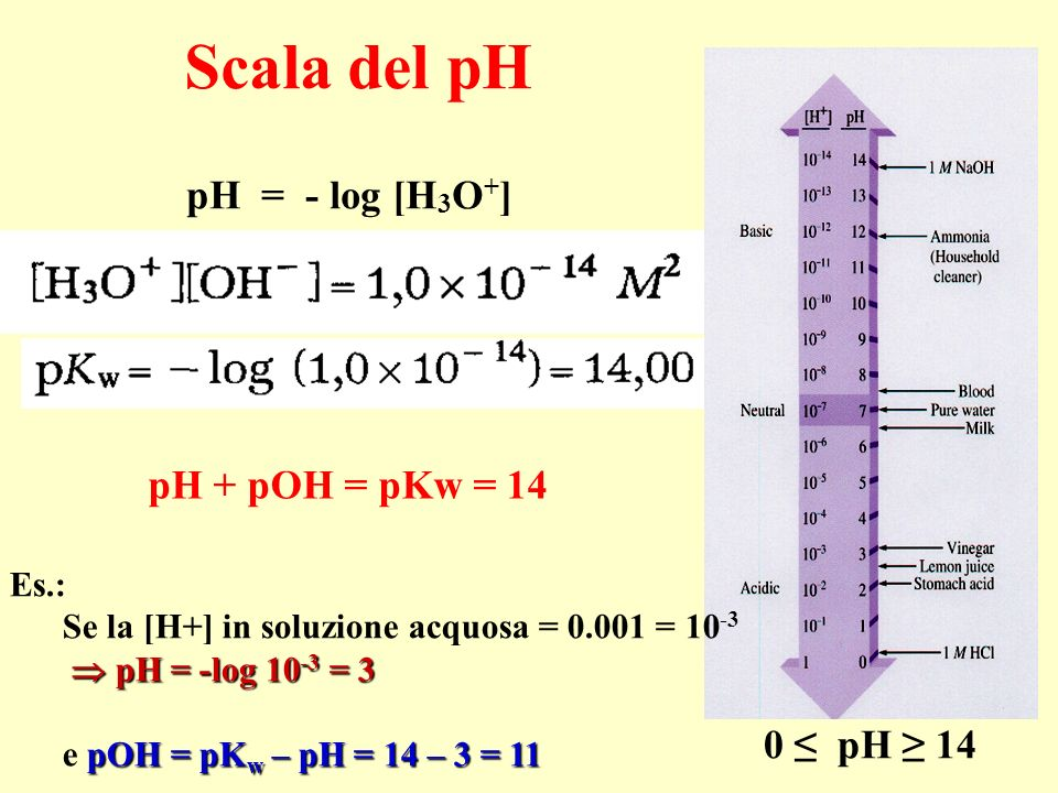 Scala del pH pH = - log [H3O+] pH + pOH = pKw = 14 0 ≤ pH ≥ 14 Es.: