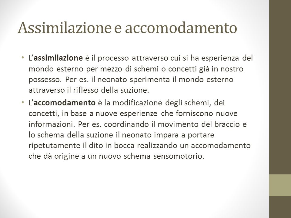 Assimilazione e accomodamento