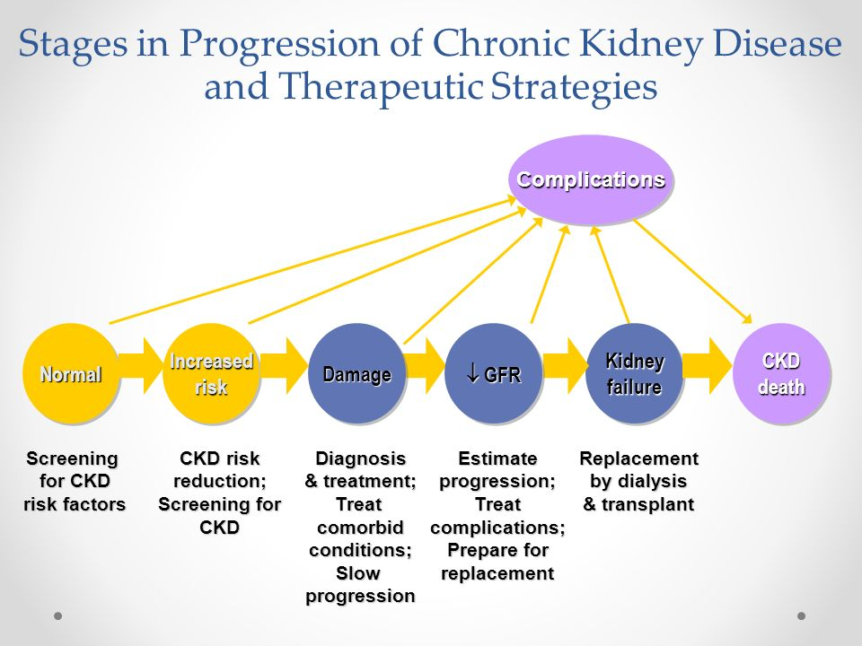 Stages in Progression of Chronic Kidney Disease and Therapeutic Strategies