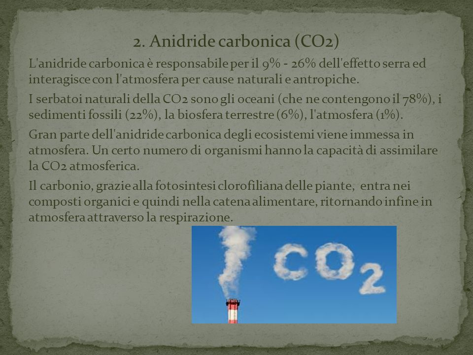 2. Anidride carbonica (CO2)