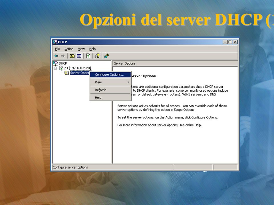 Opzioni del server DHCP (1)