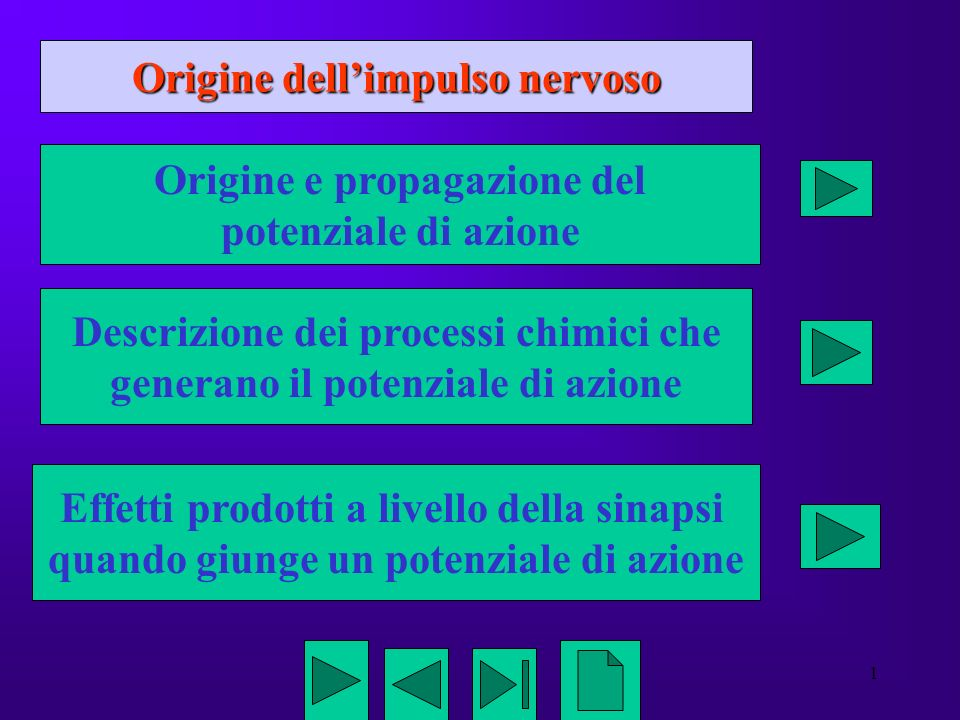 Origine dell'impulso nervoso