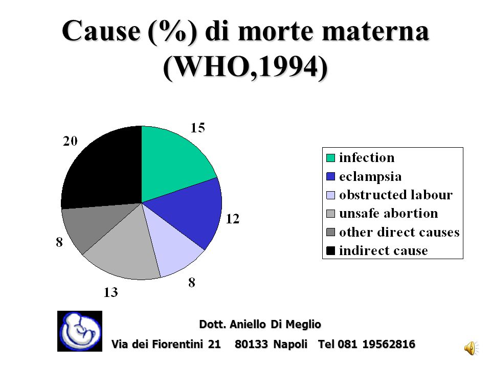 Cause (%) di morte materna (WHO,1994)