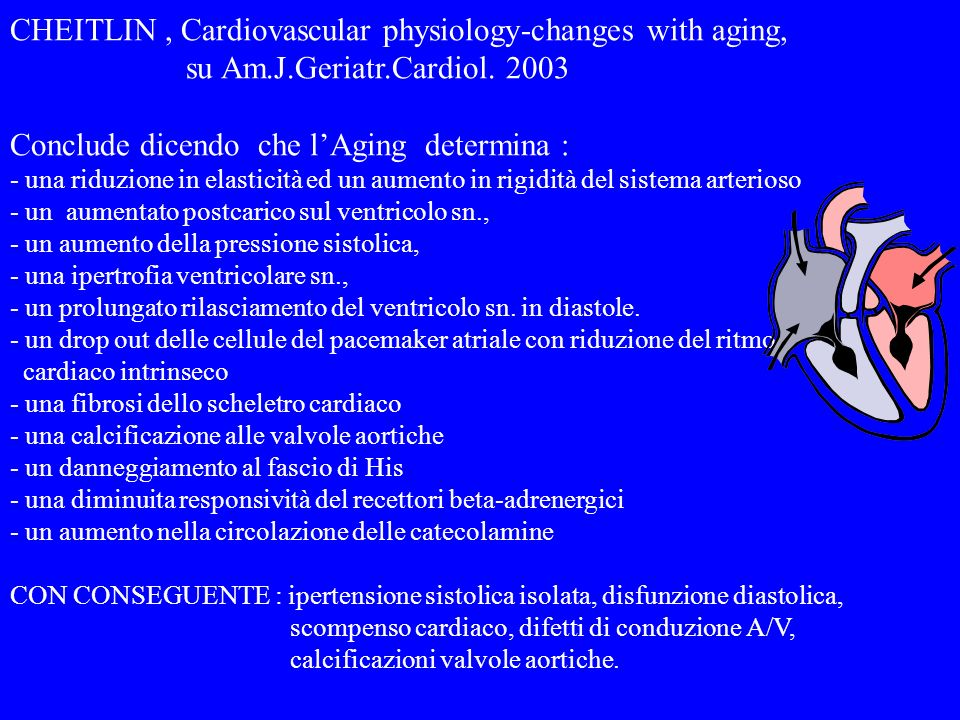 CHEITLIN , Cardiovascular physiology-changes with aging,