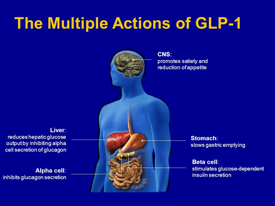 The Multiple Actions of GLP-1