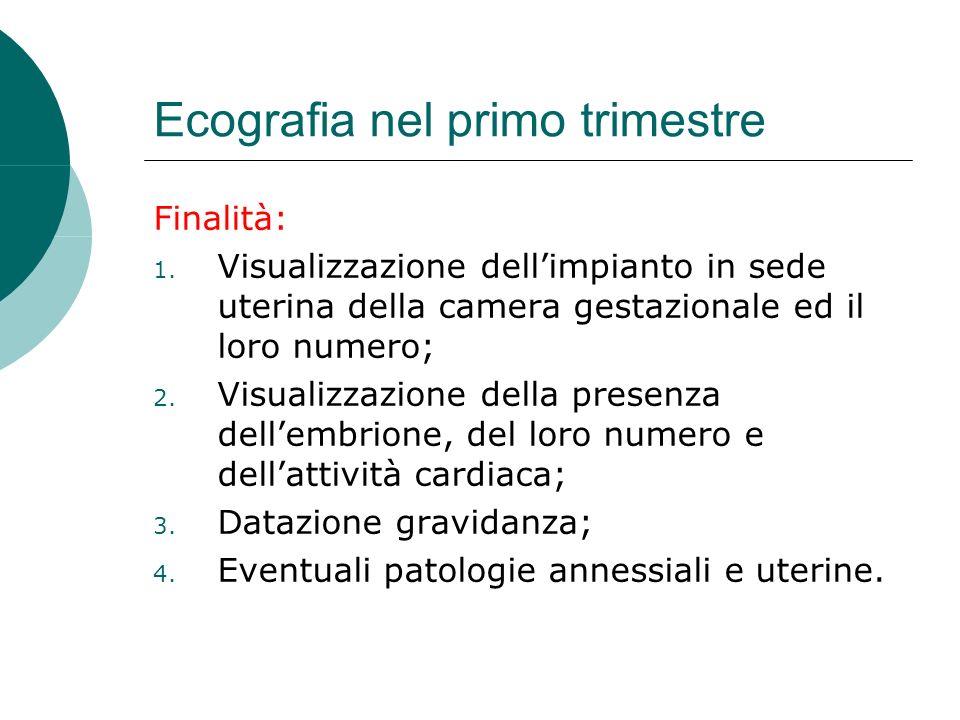 Datazione ecografia ostetrica