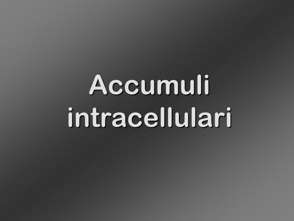 Accumuli intracellulari