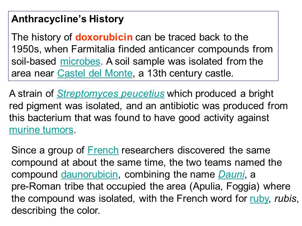 Anthracycline's History