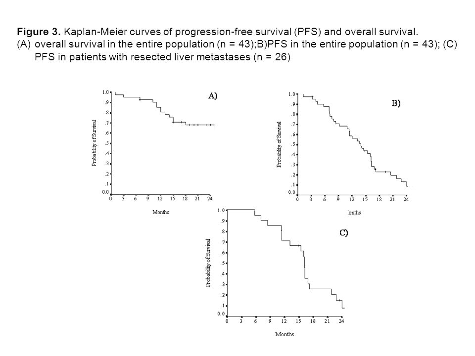 Figure 3. Kaplan-Meier curves of progression-free survival (PFS) and overall survival.