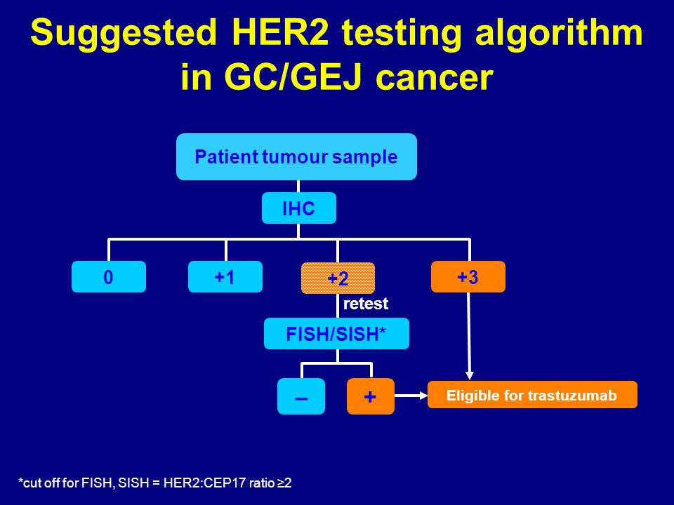Suggested HER2 testing algorithm in GC/GEJ cancer