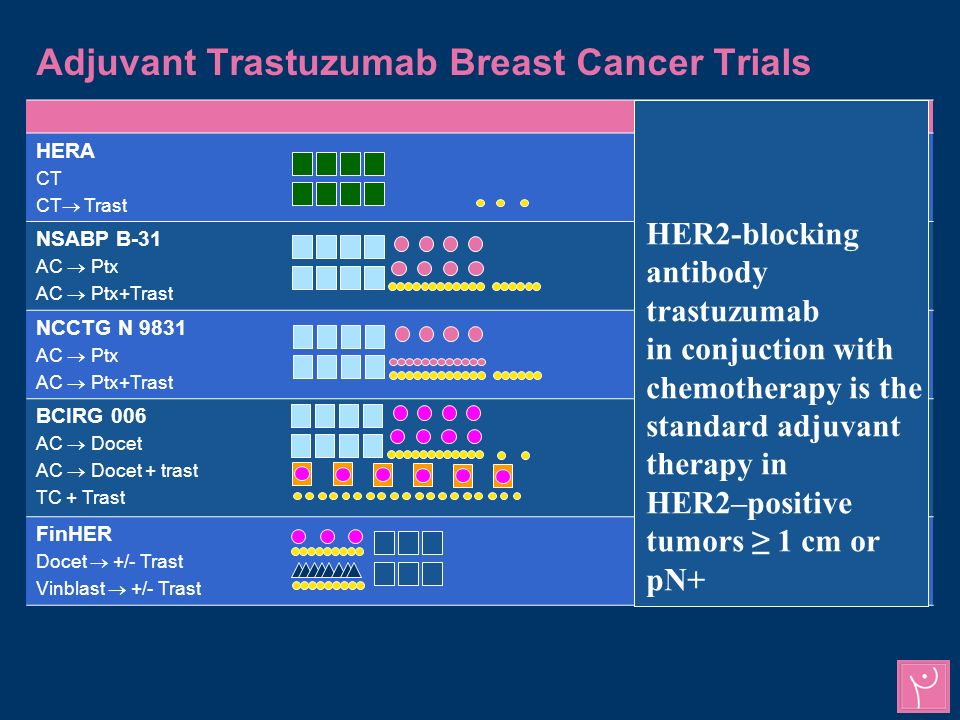 Adjuvant Trastuzumab Breast Cancer Trials