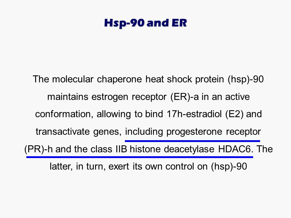 Hsp-90 and ER
