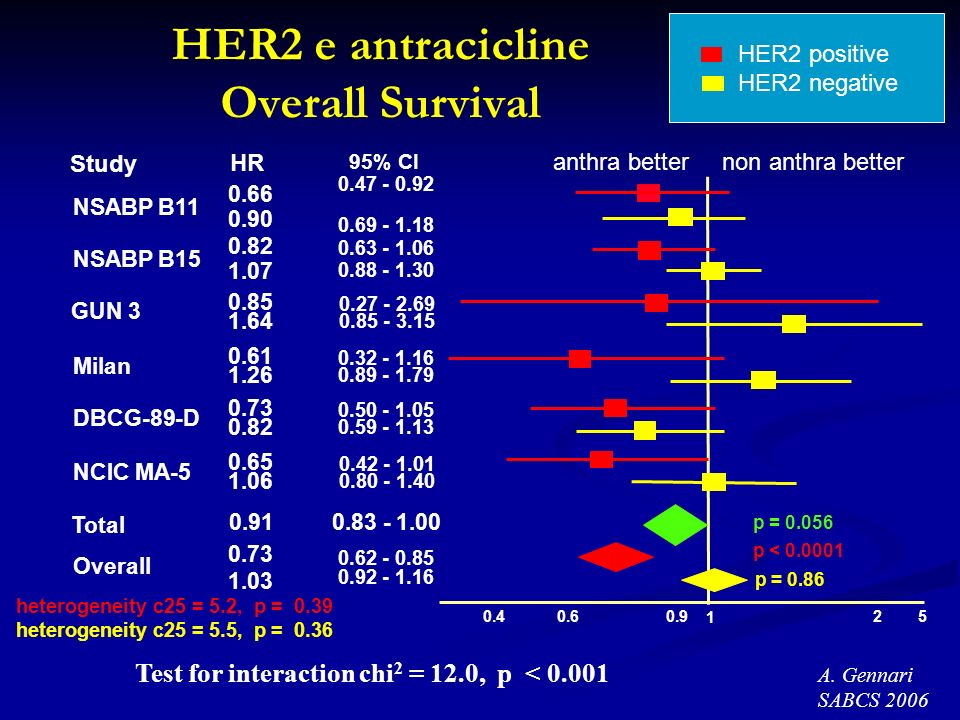 HER2 e antracicline Overall Survival