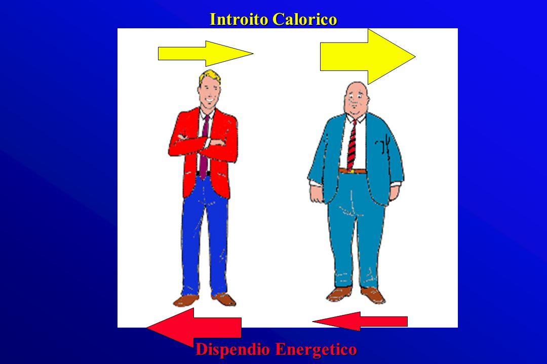 Introito Calorico Dispendio Energetico