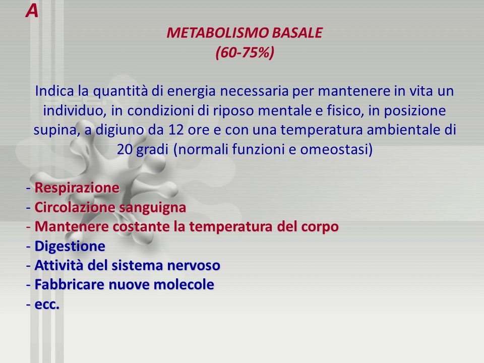 A METABOLISMO BASALE (60-75%)