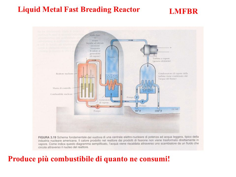 Liquid Metal Fast Breading Reactor
