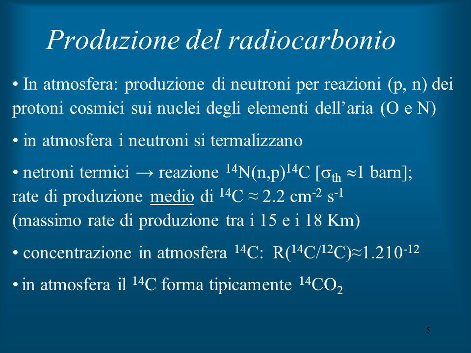 AMS radiocarbonio dating prezzi