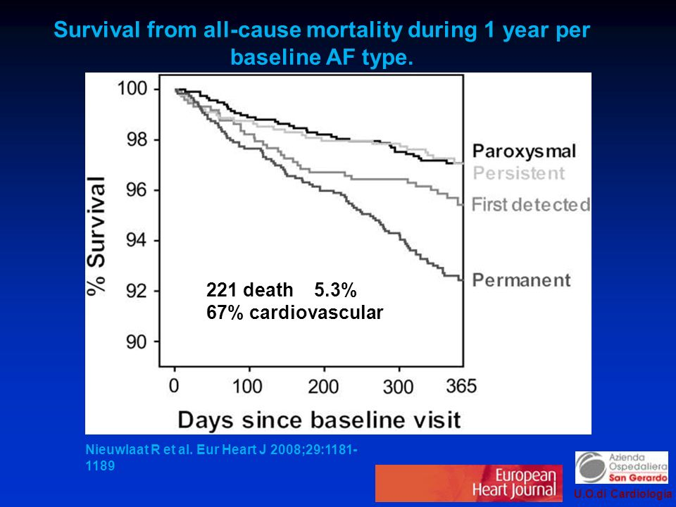 Survival from all-cause mortality during 1 year per baseline AF type.