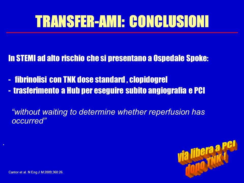 TRANSFER-AMI: CONCLUSIONI