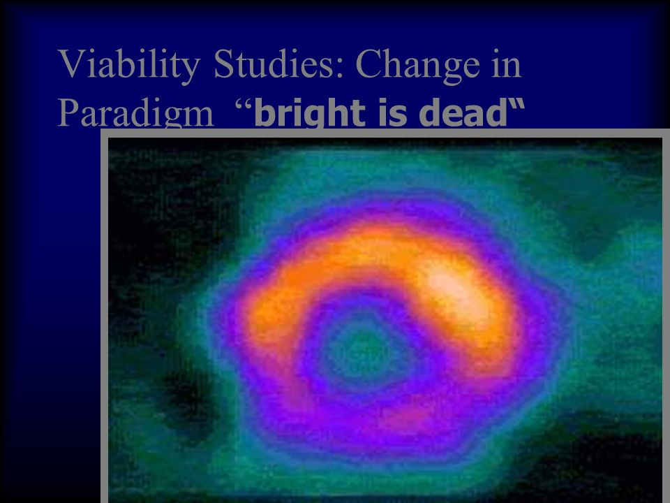 Viability Studies: Change in Paradigm bright is dead