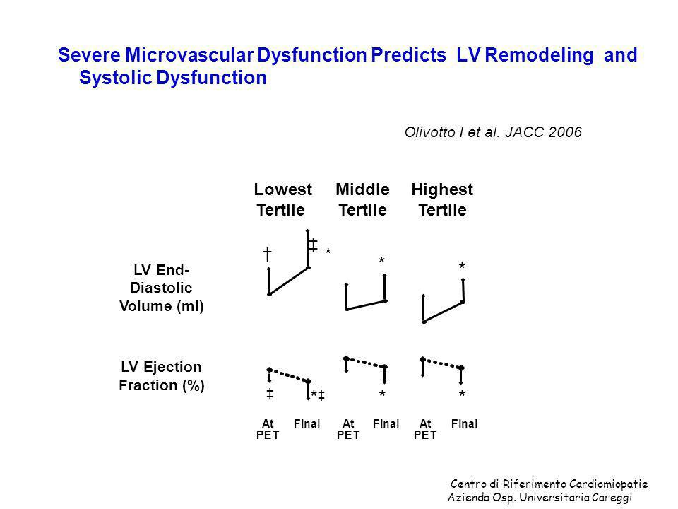 Severe Microvascular Dysfunction Predicts LV Remodeling and Systolic Dysfunction