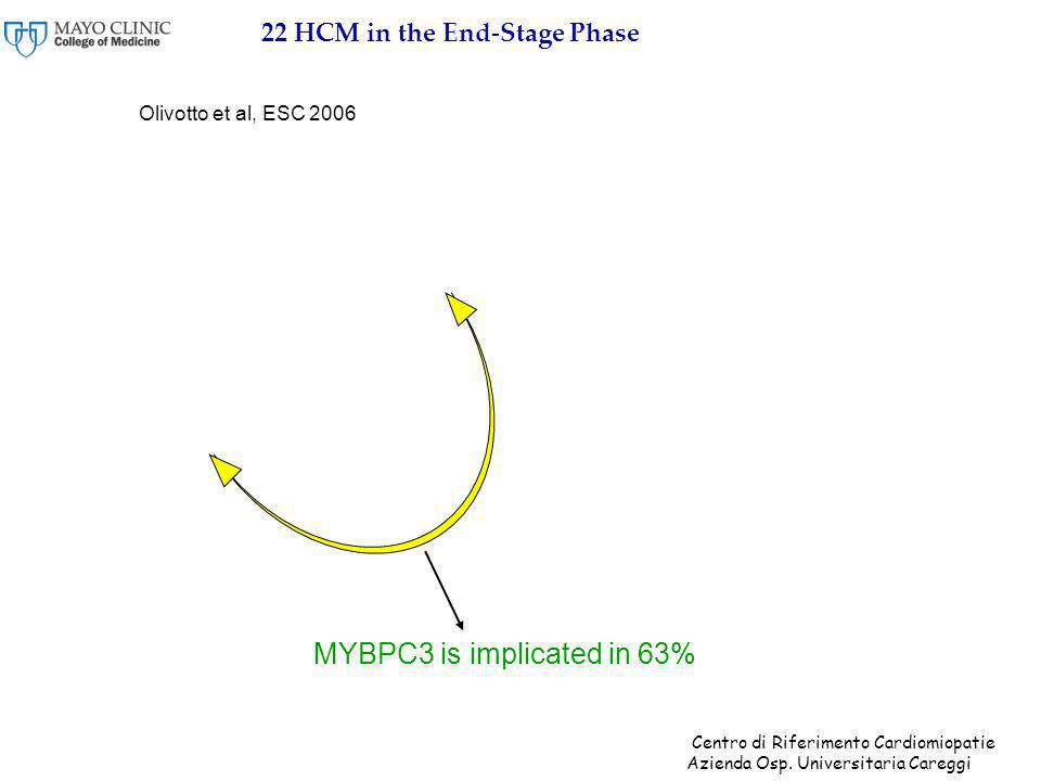 22 HCM in the End-Stage Phase