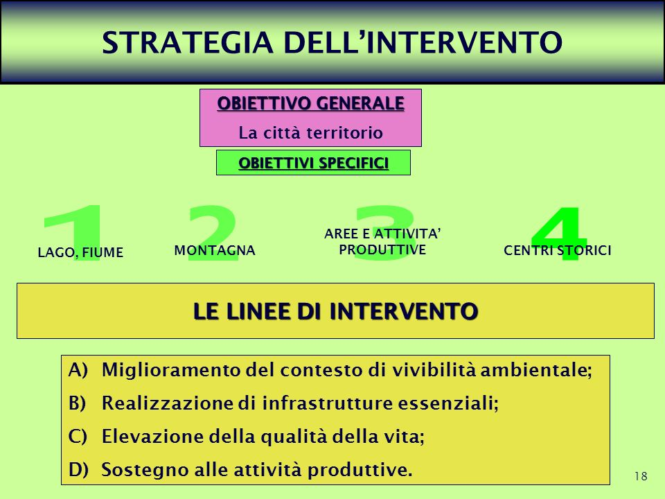 STRATEGIA DELL'INTERVENTO