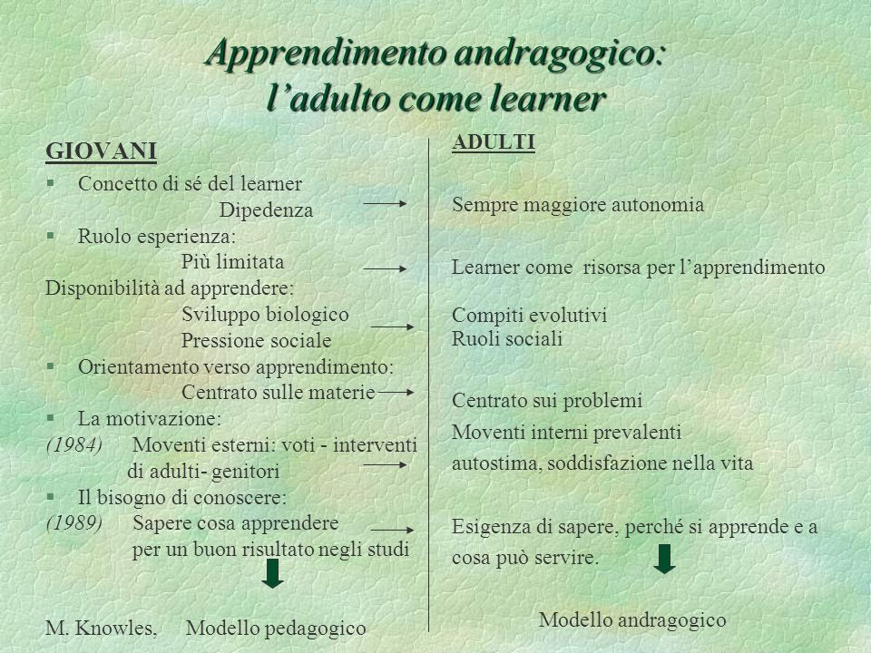 Apprendimento andragogico: l'adulto come learner