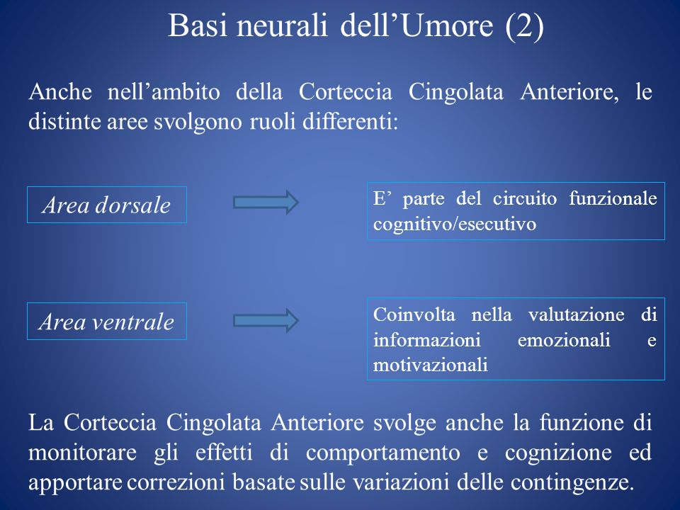Basi neurali dell'Umore (2)