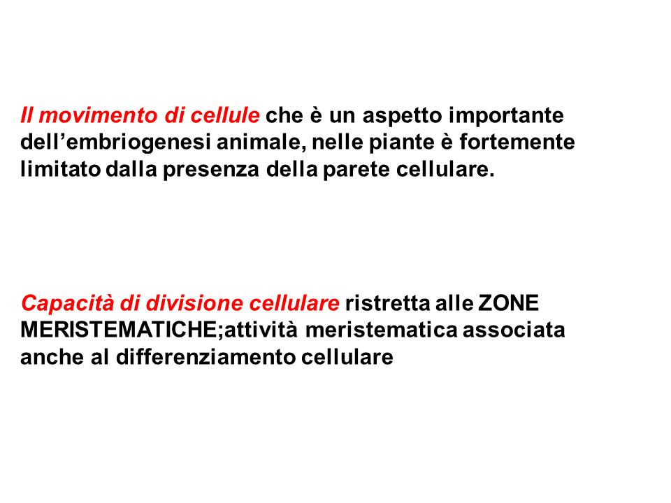 Il movimento di cellule che è un aspetto importante
