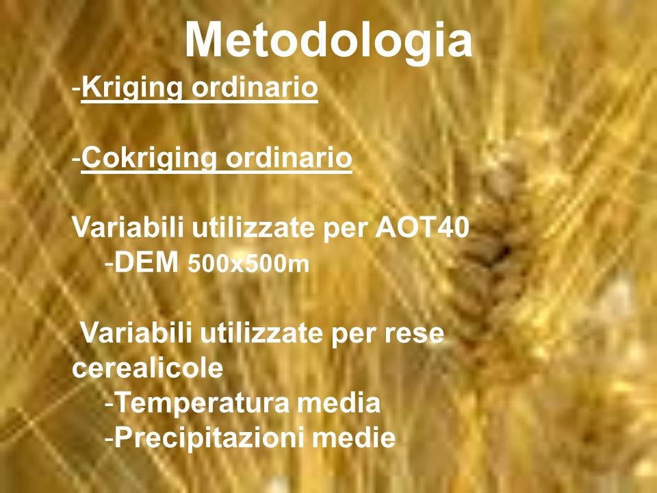 Metodologia Kriging ordinario Cokriging ordinario