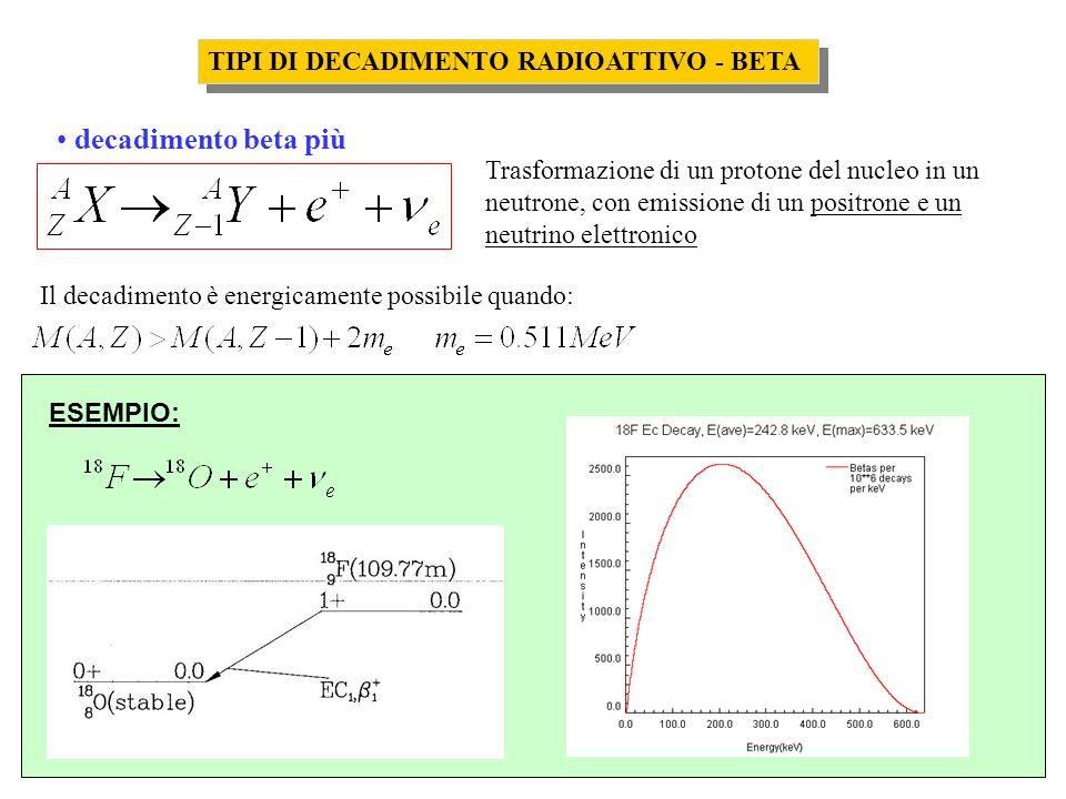 La cinetica del decadimento radioattivo e della datazione radiometrica