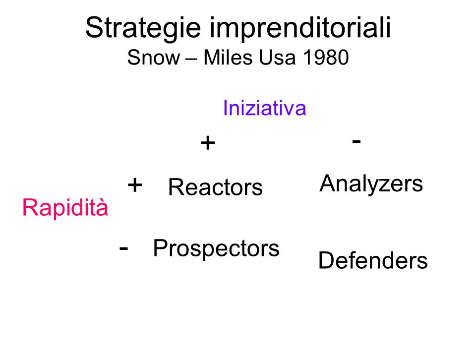 Strategie imprenditoriali Snow – Miles Usa 1980 Iniziativa