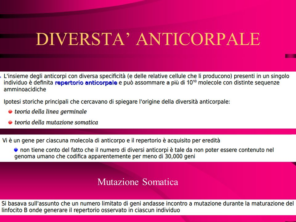 DIVERSTA' ANTICORPALE