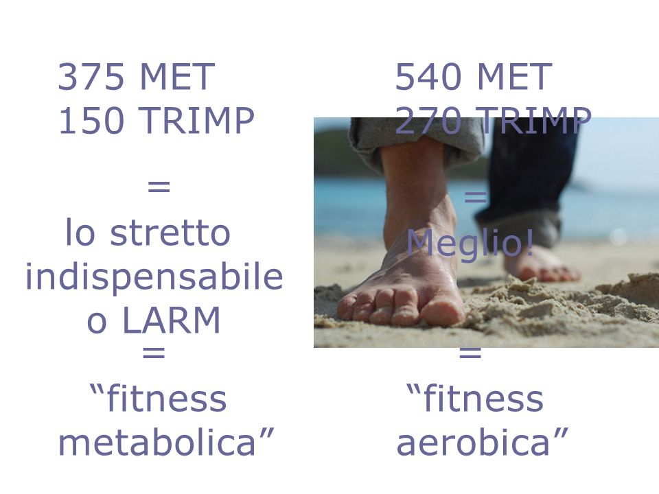 375 MET 150 TRIMP. 540 MET. 270 TRIMP. = = lo stretto. indispensabile. o LARM. Meglio! = =