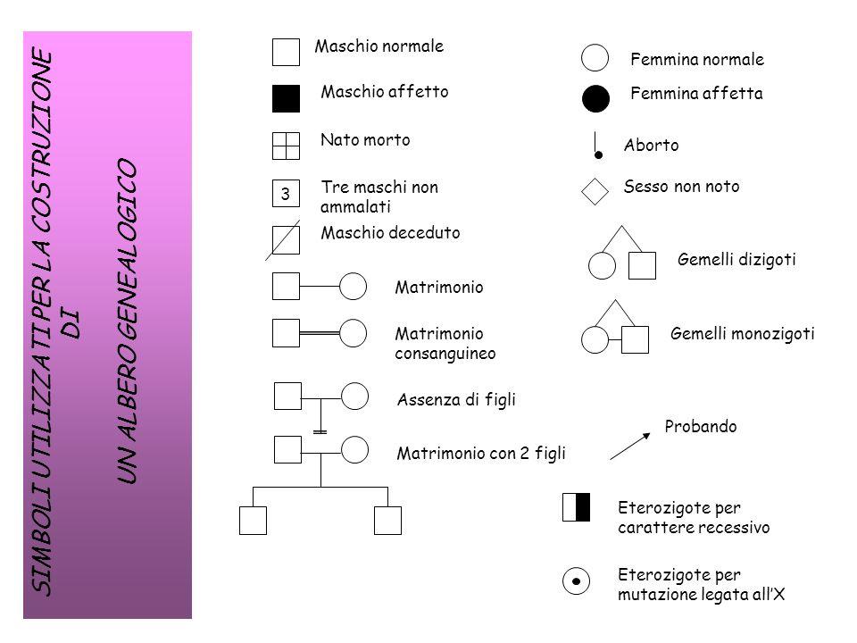 Modelli di trasmissione ppt video online scaricare - Gemelli monozigoti diversi ...