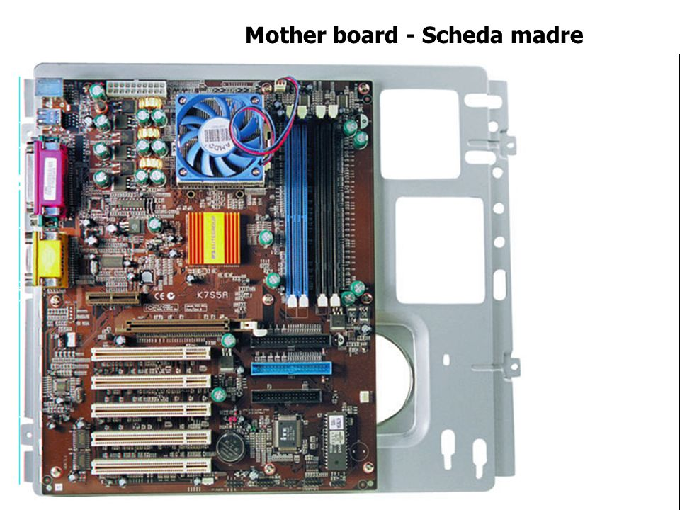 Mother board - Scheda madre