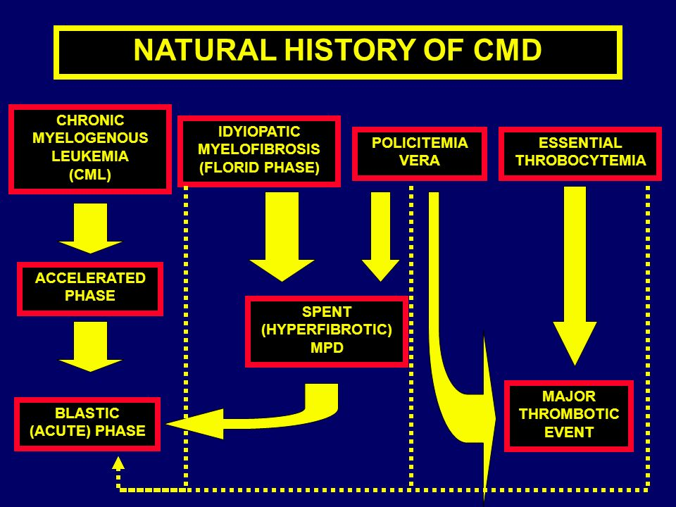 NATURAL HISTORY OF CMD CHRONIC MYELOGENOUS LEUKEMIA (CML) IDYIOPATIC
