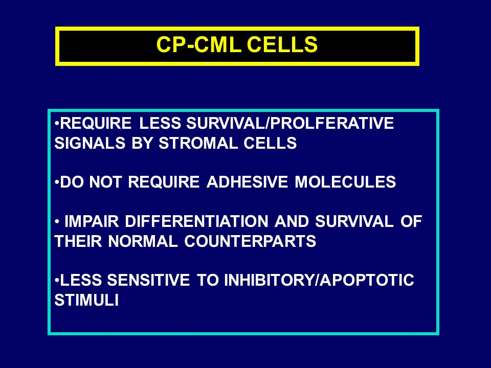CP-CML CELLS REQUIRE LESS SURVIVAL/PROLFERATIVE SIGNALS BY STROMAL CELLS. DO NOT REQUIRE ADHESIVE MOLECULES.