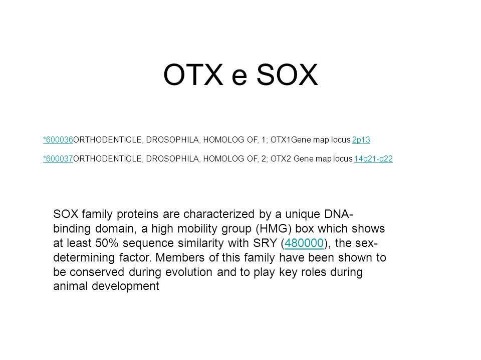 OTX e SOX *600036ORTHODENTICLE, DROSOPHILA, HOMOLOG OF, 1; OTX1Gene map locus 2p13.