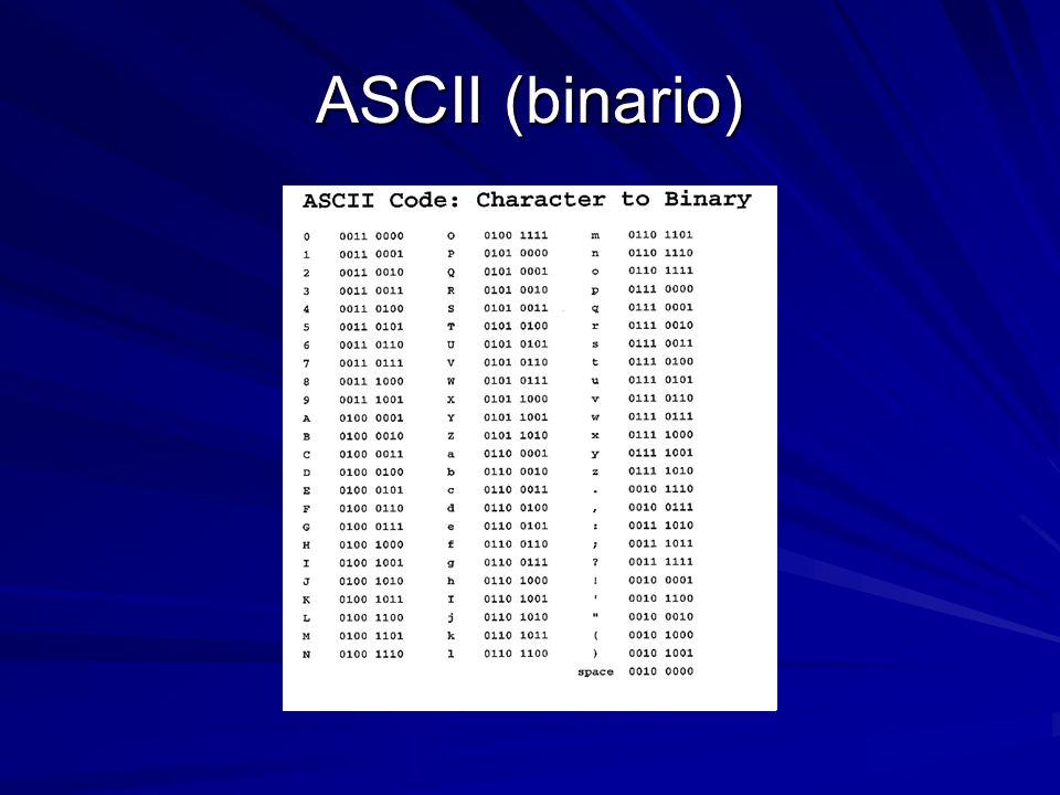 cosè il trading di codice binario