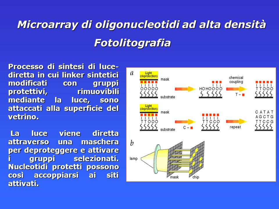 Microarray di oligonucleotidi ad alta densità