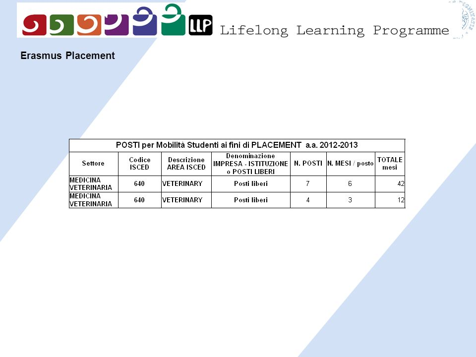 Erasmus Placement 19