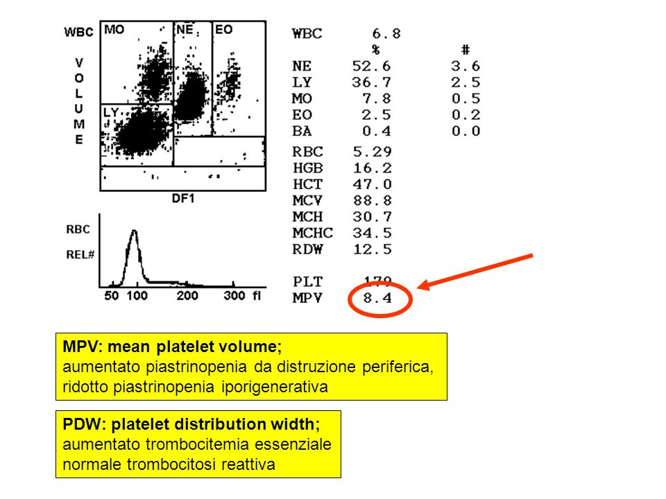 MPV: mean platelet volume;