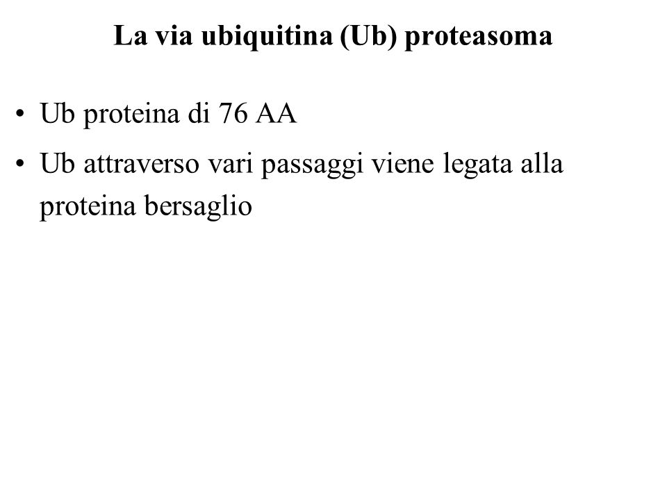 La via ubiquitina (Ub) proteasoma